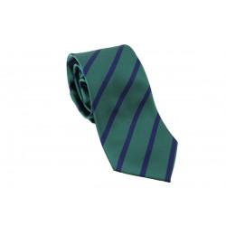 Corbata Rayas Bicolor